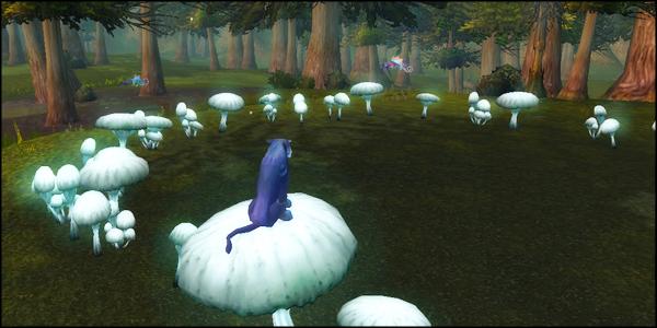 kitty mushroom